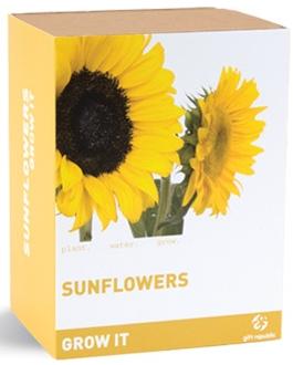 SunflowerKit1